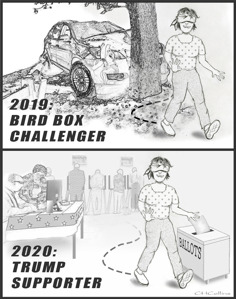 The Bird Box Challenge - Comic by CHCollins